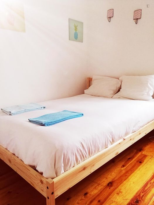Attractive double bedroom in amazing house with a beautiful garden in Campolide