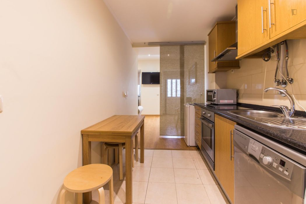 Amazing 1-bedroom apartment in Príncipe Real with garden