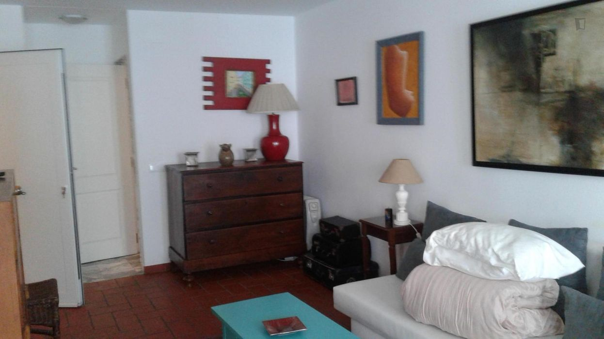 Nice 1-bedroom apartment near Santos train station