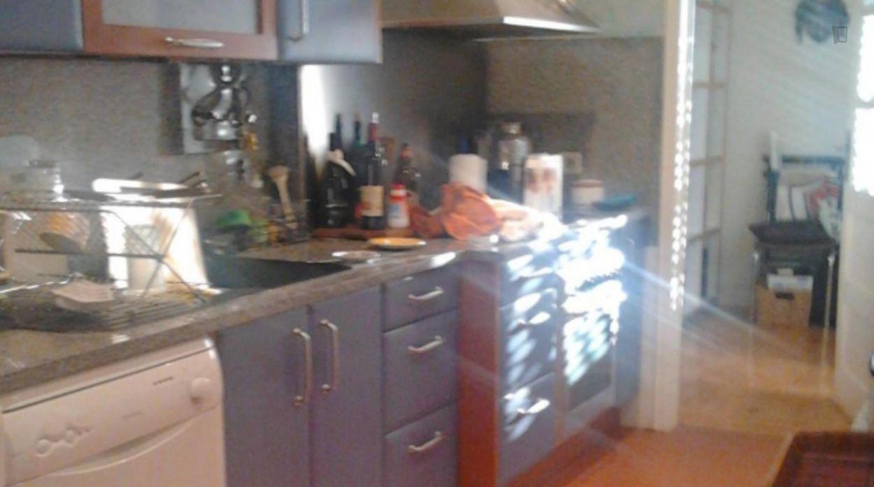 Homely single room in Alameda