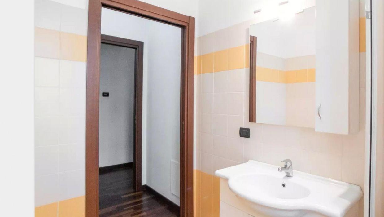 Homely studio apartment in Calvairate