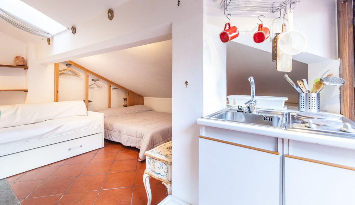 Lovely studio apartment with private terrace near Piazza Navona