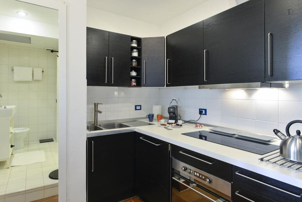 Cosy Apartment in Trastevere Avenue near the Universities and the John Cabot University, close to public transport and railway station