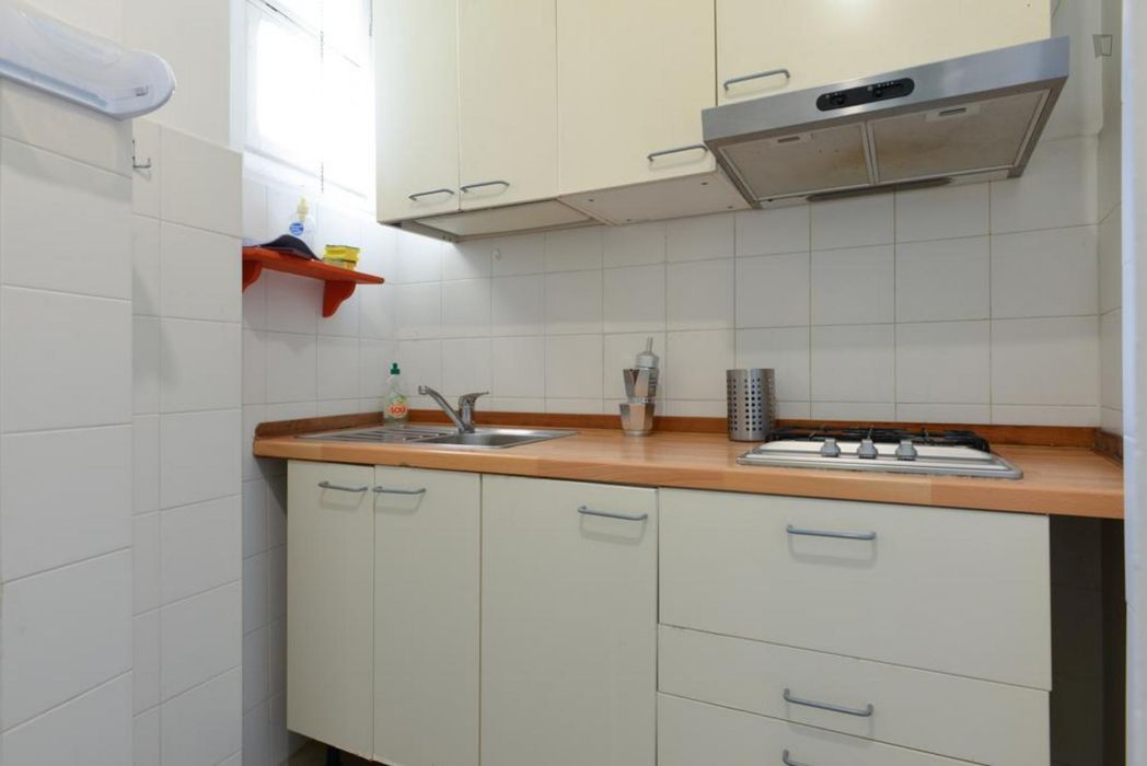 Bright 1-bedroom apartment close to Euclide station