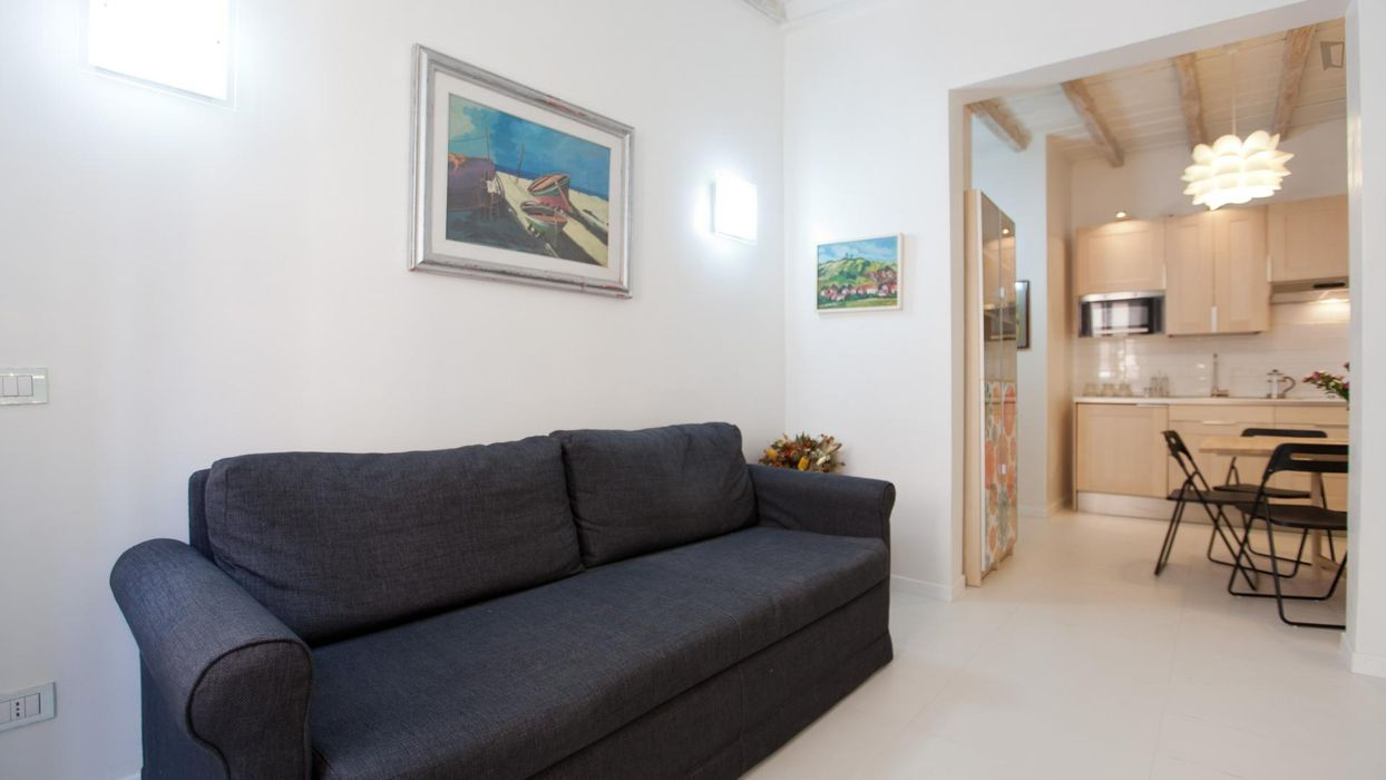 Nice 1-bedroom apartment close to the legendary Pantheon