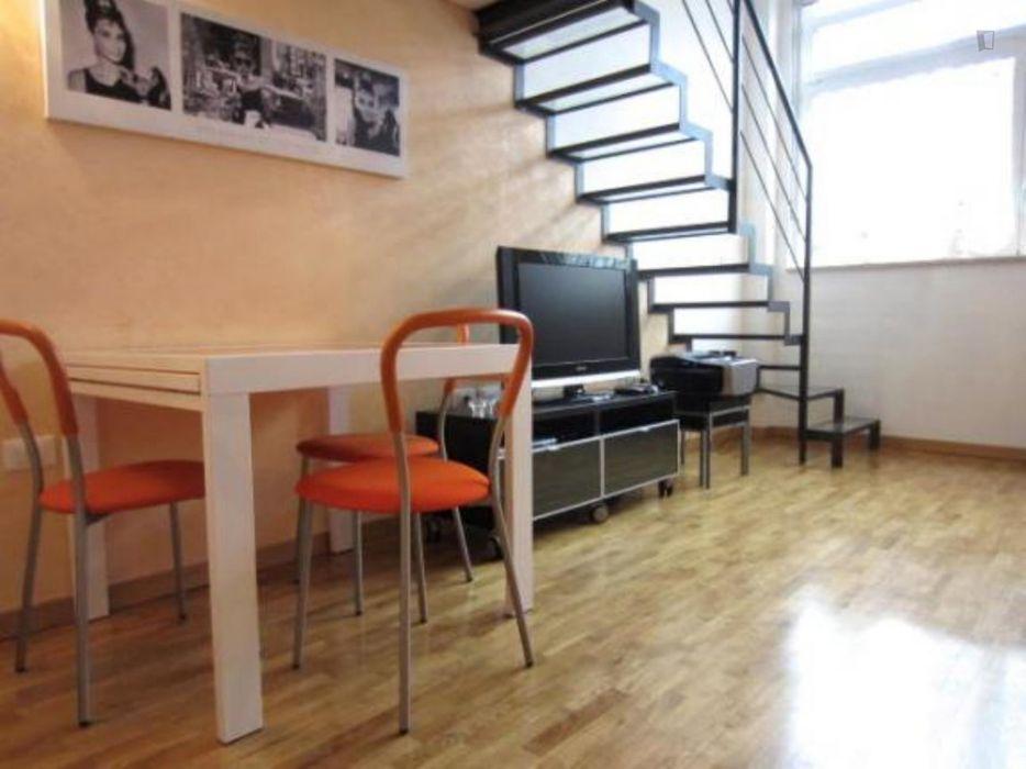 Spacious studio in Ticinese neighbourhood