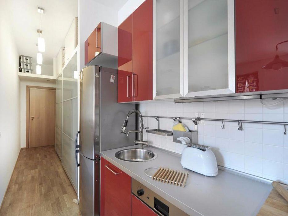 Great-looking apartment near Zona Solari