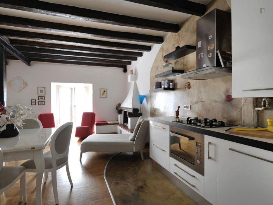 Posh and cosy 1-bedroom duplex in Navigli