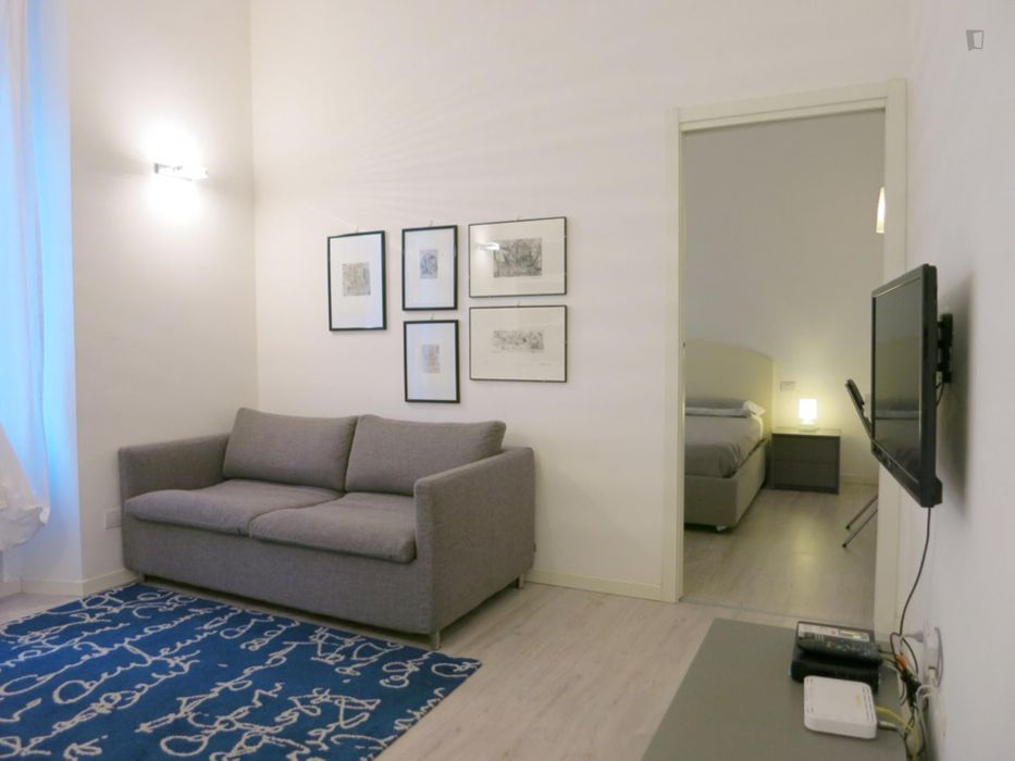Renovated 1 bedroom flat in the Brera disctrict