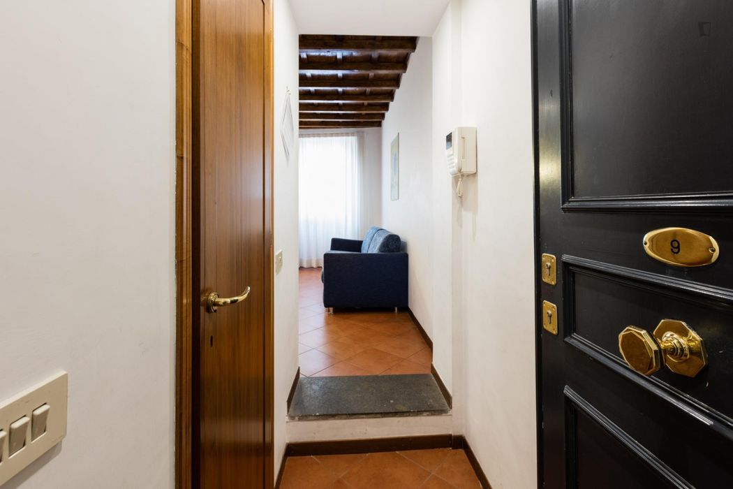 Spacious studio in Centro Storico neighbourhood