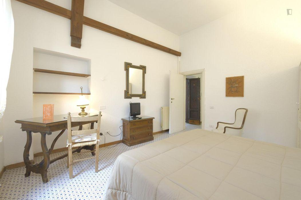Comfy 1-bedroom flat in the Trastevere neighbourhood