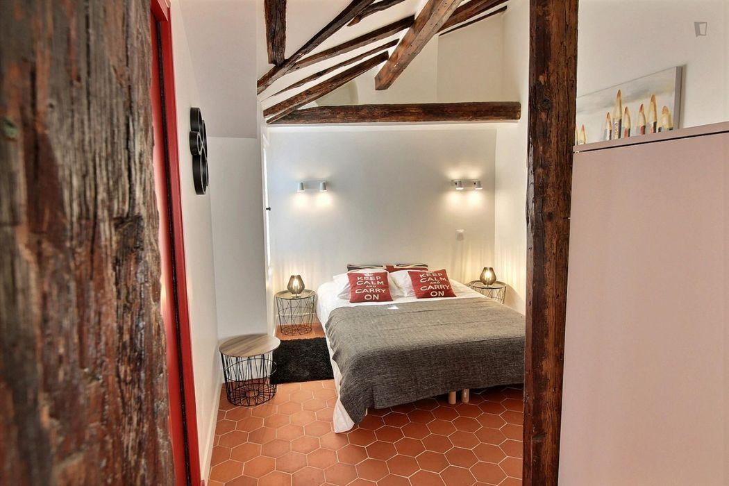 Great looking double bedroom in Hôtel de Ville - Centre Pompidou