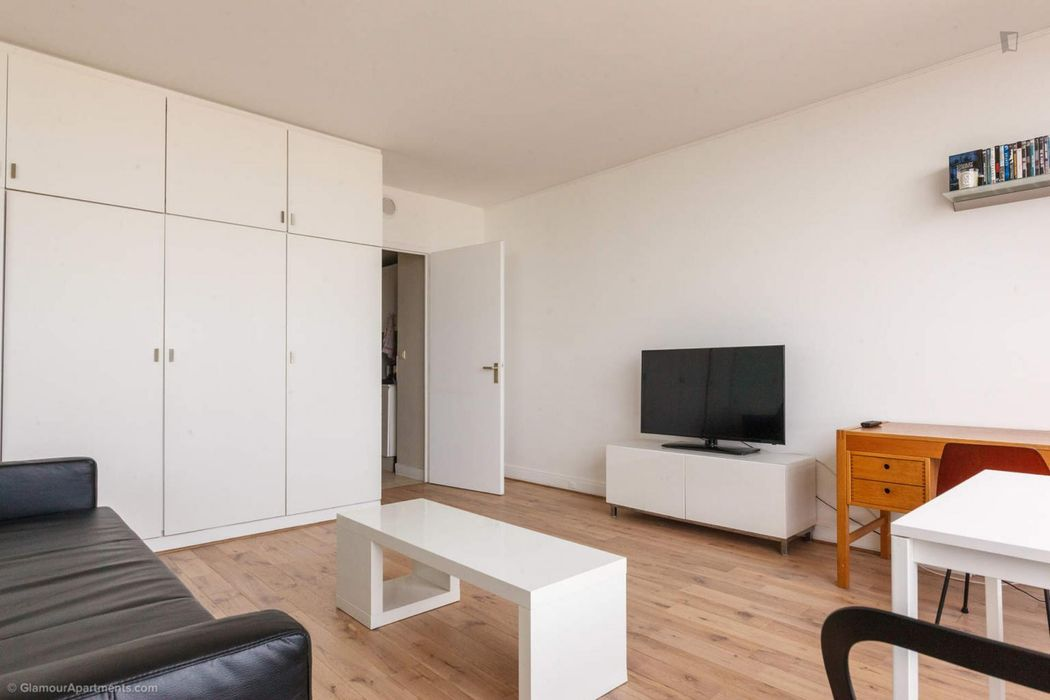 Very bright studio in Grenelle