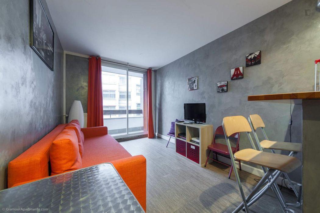 Attractive studio in Faubourg Saint-Germain