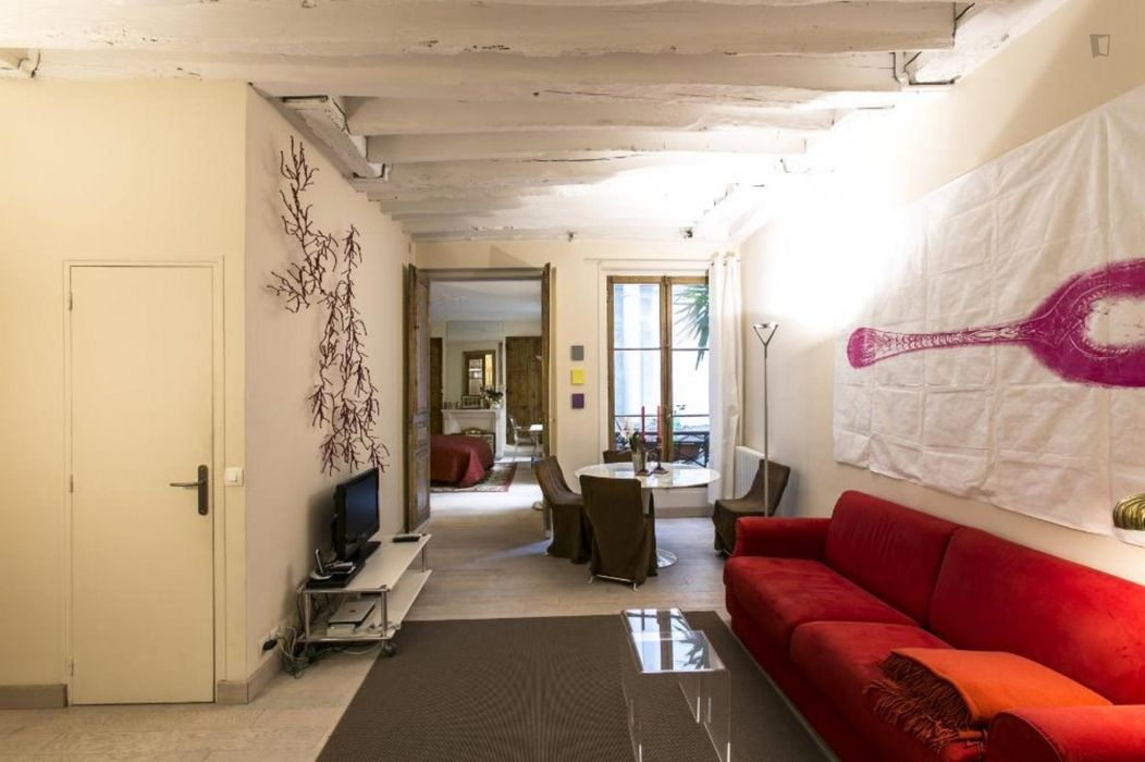 Dashing 1-bedroom apartment near the Châtelet metro