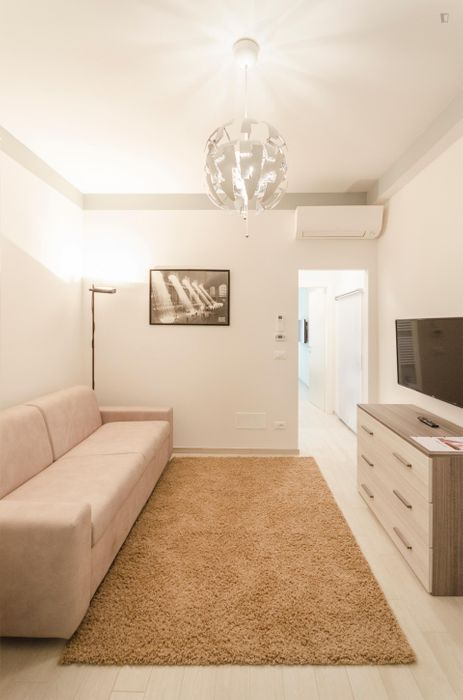 Cool 1-bedroom apartment near Le due Torri: Garisenda e degli Asinelli