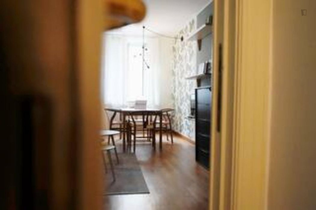 Nice 1-bedroom apartment in Moscova