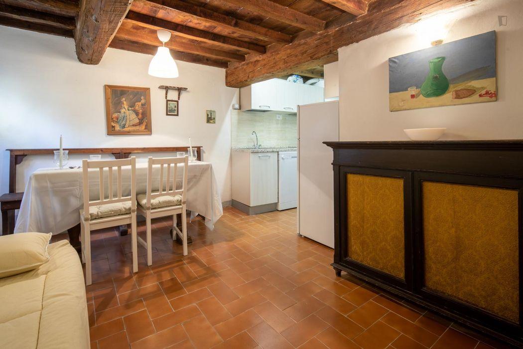 Beautiful 1-bedroom apartment near Basilica di Santa Croce di Firenze