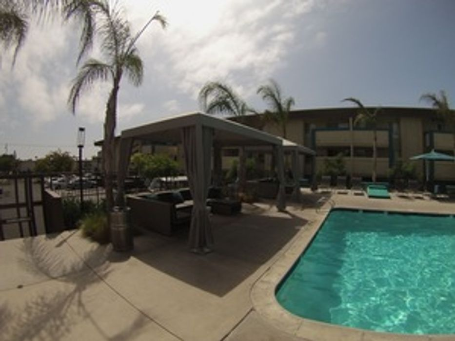 Pacific Beach Premium Shared Apartments (AVA)