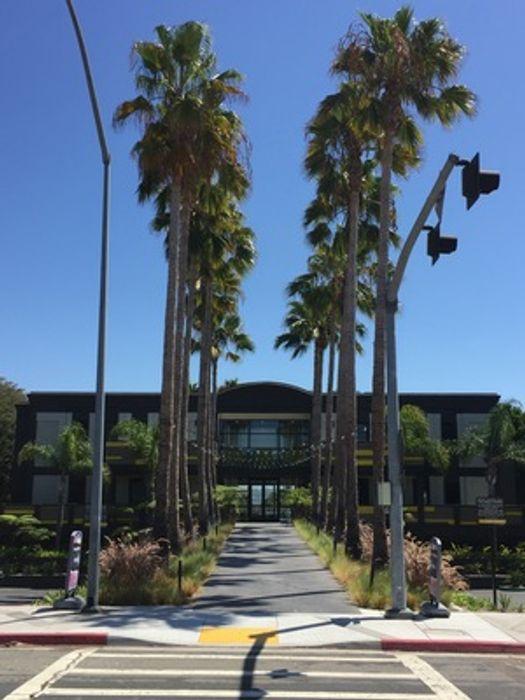 Pacific Beach Premium Shared Apartments (AVA)